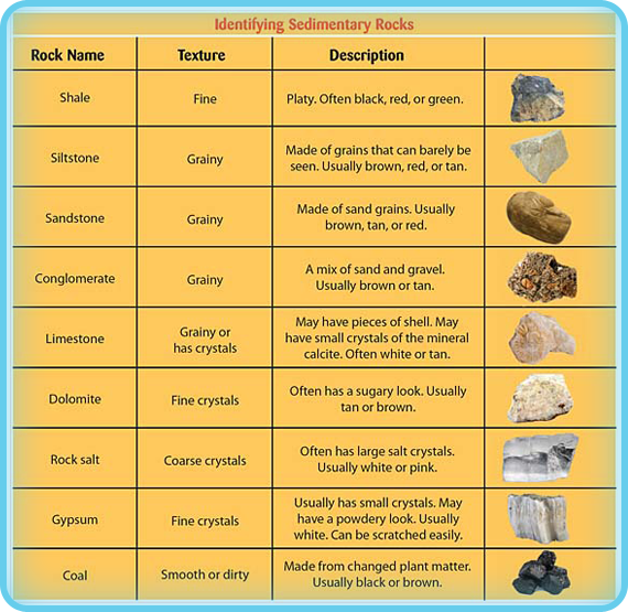 This Chart Can Help You Identify Diffe Kinds Of Sedimentary Rocks